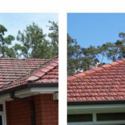 Tiled roof before and after cleaning with Wet & Forget