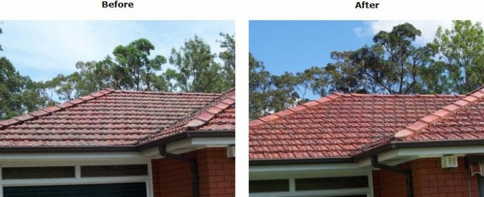 Tiled Roof Before And After Cleaning With Wet U0026 Forget