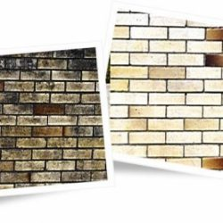 Brick wall before and after cleaning with Wet & Forget