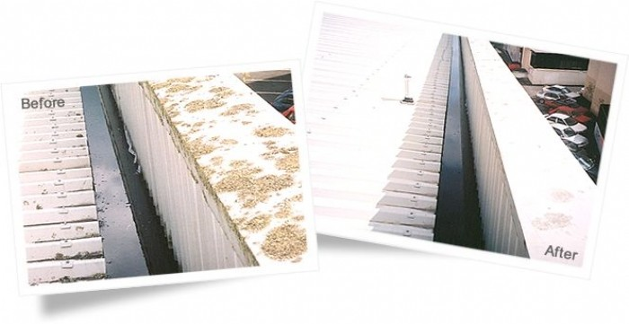 Roof parapet before and after cleaning with Wet & Forget