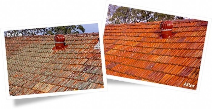 Roof Tiles Before And After Cleaning With Wet U0026 Forget